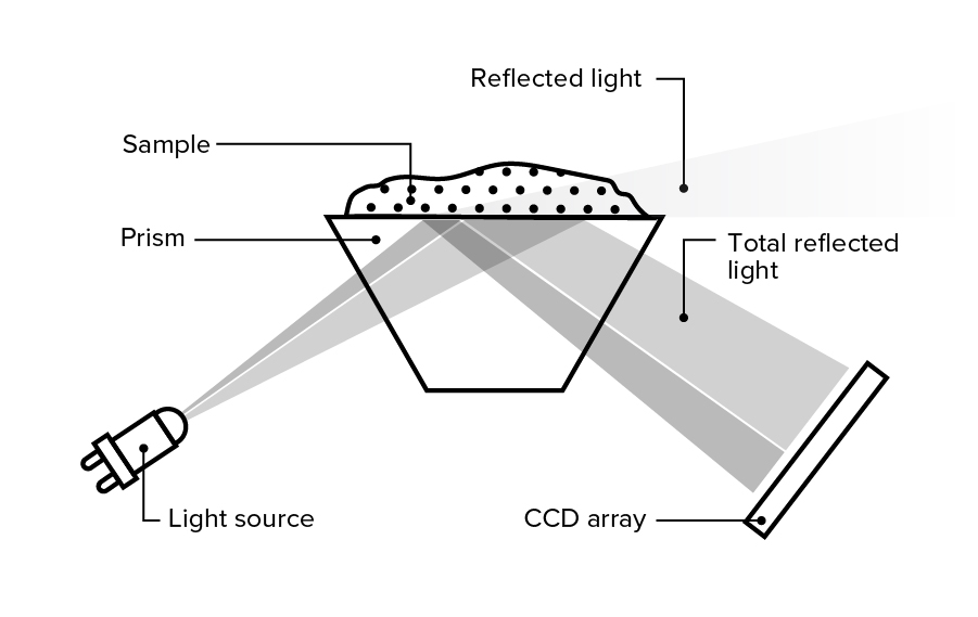 Refracted Light Graphic